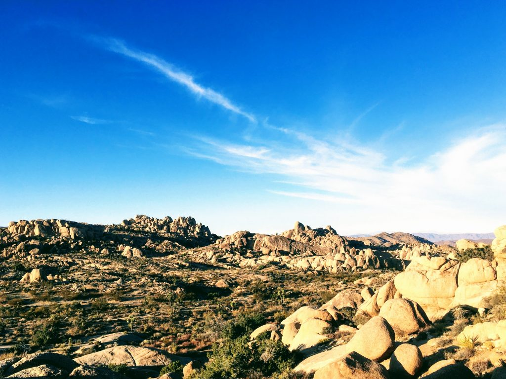 blue sky and rocks at joshua tree national park