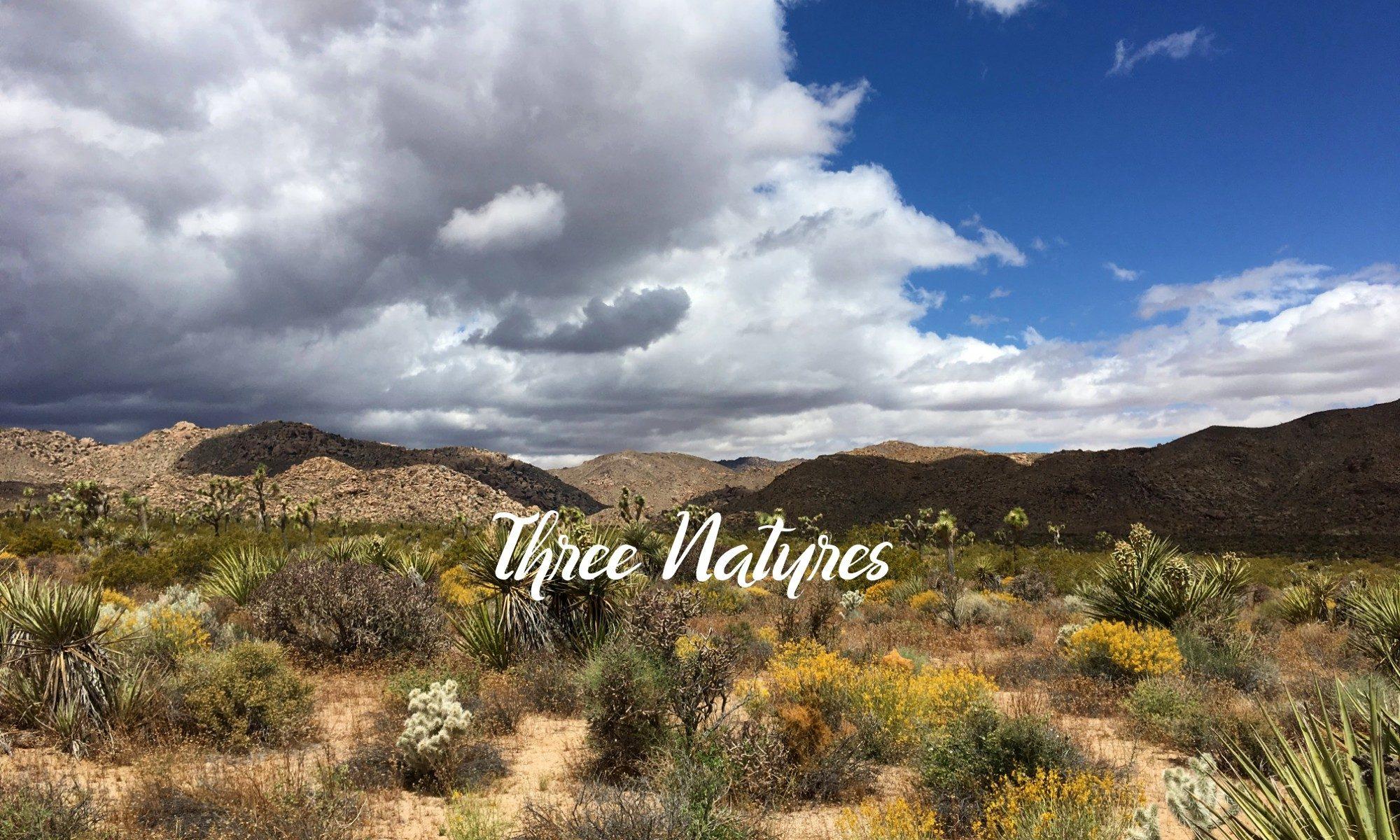 Three Natures